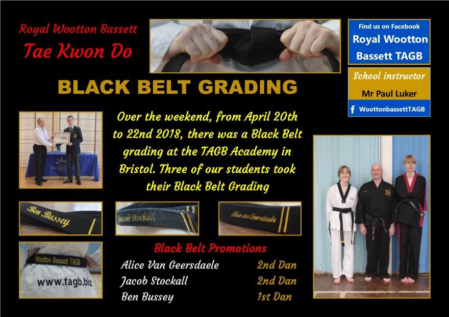 website Black grading April 18