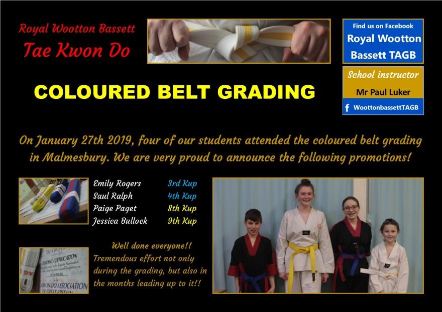 website grading jan 2019