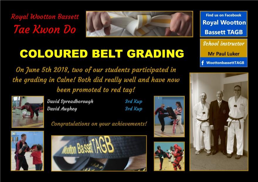 website grading June 18