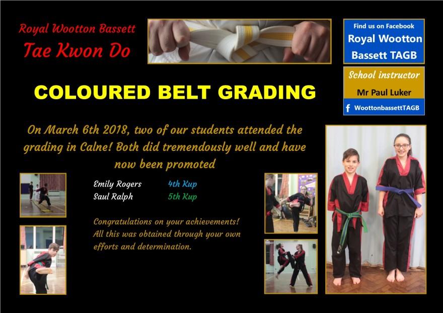 website grading March 18