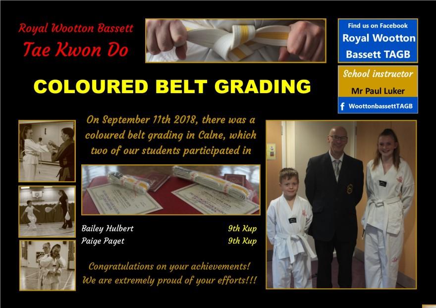 website grading September 18
